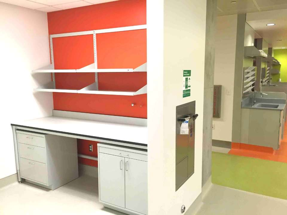 lab cabinets and reagent shelving
